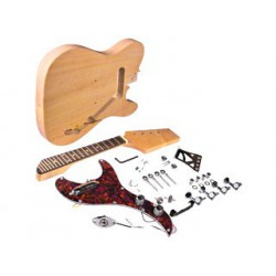 Electric Mandolin Kit