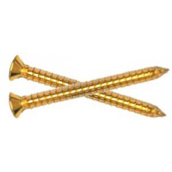 Neck attachment Gold screw 4.2x45mm